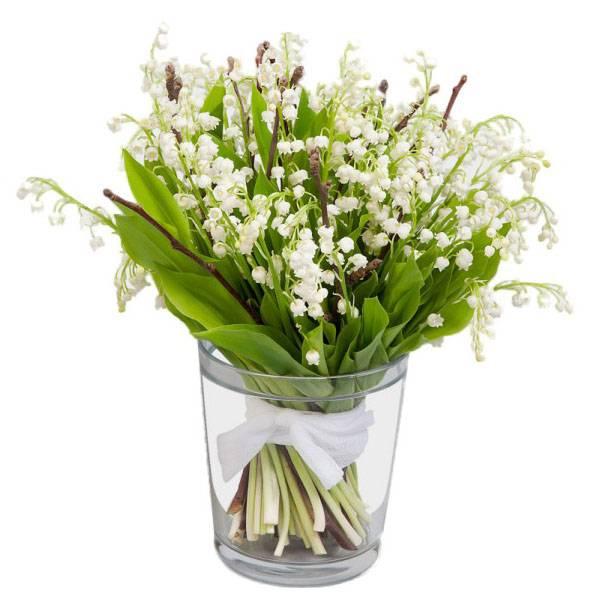 Купить ландыши в минске цветы купить цветы недорого в новосибирске